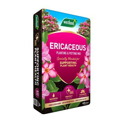 Westland Ericaceous Planting and Potting Mix 60 litre bag