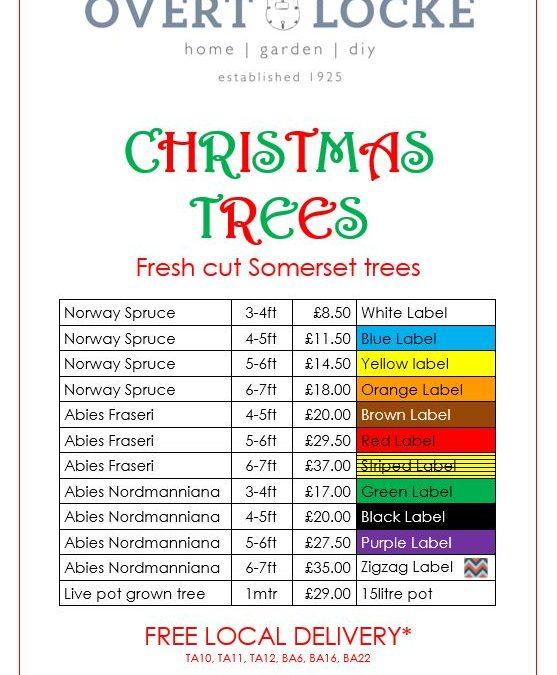 Christmas tree price list