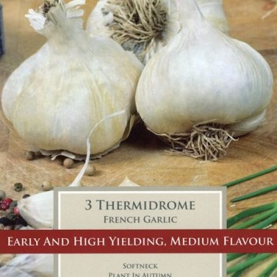 French Garlic Thermidrome
