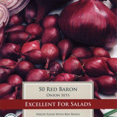 Taylors Bulbs Onion Red Baron Variety