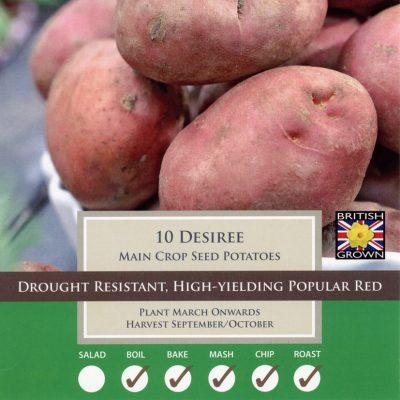 Taylors Bulbs Potato Taster Pack - Desiree