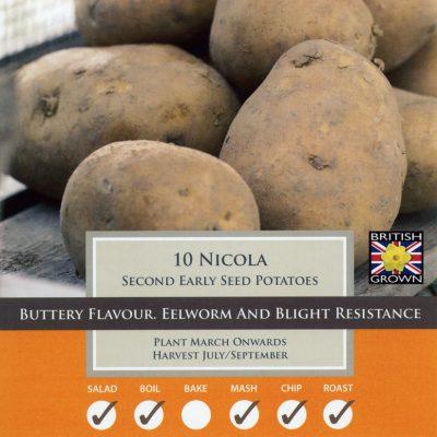 Taylors Bulbs Potato Taster Pack - Nicola