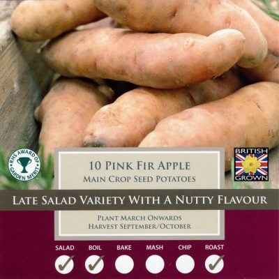 Taylors Bulbs Potato Taster Pack - Pink FIr Apple
