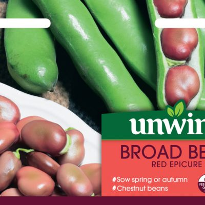Unwins Seeds Broad Bean Red Epicure