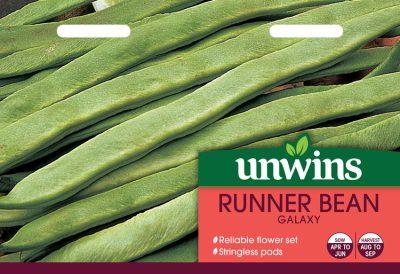 Unwins Seeds Runner Bean Galaxy