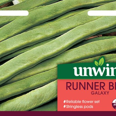 Unwins Seeds Runner Bean Galaxy
