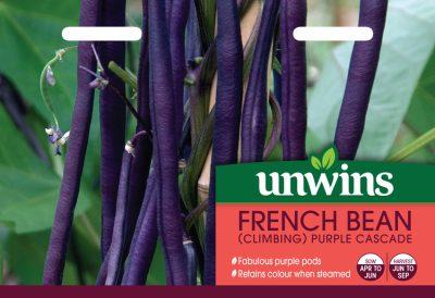 Unwins Seeds French Bean Purple Cascade
