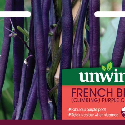 Unwins Seeds French Bean Purple Cascade