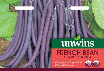 Unwins Seeds French Bean Amethyst