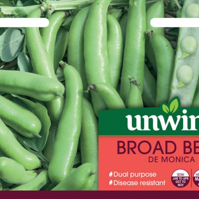 Unwins Seeds Broad Bean De Monica