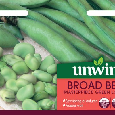 Unwins Seeds Broad Bean Masterpiece Green Longpod