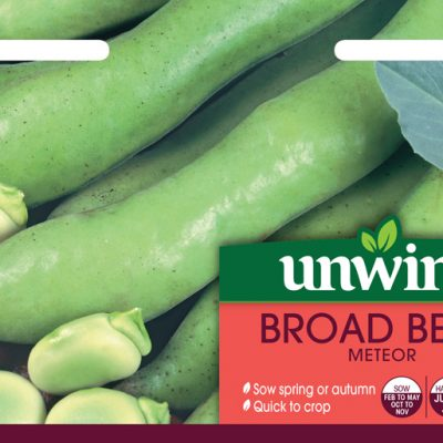Unwins Seeds Broad Bean Meteor
