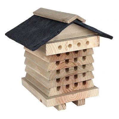 Bee Hive Insect House