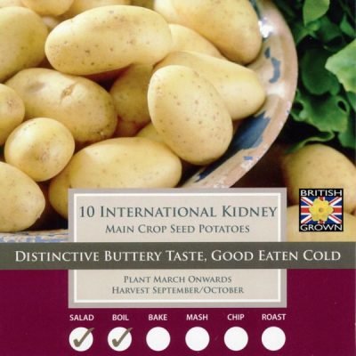 Seed Potato International Kidney